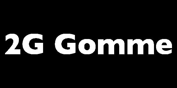 2g-600x300
