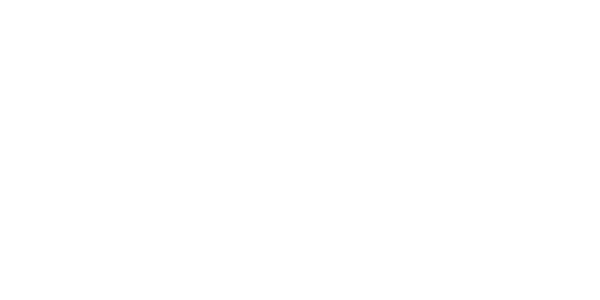 fiorin-600x300